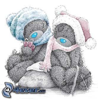 oursons, écharpe, chapeau, l'hiver