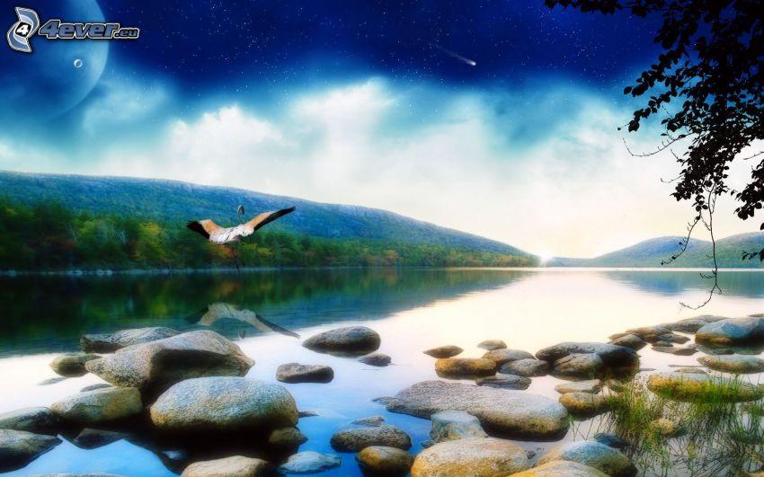 rivière, montagne, pierres, cigogne, ciel du soir