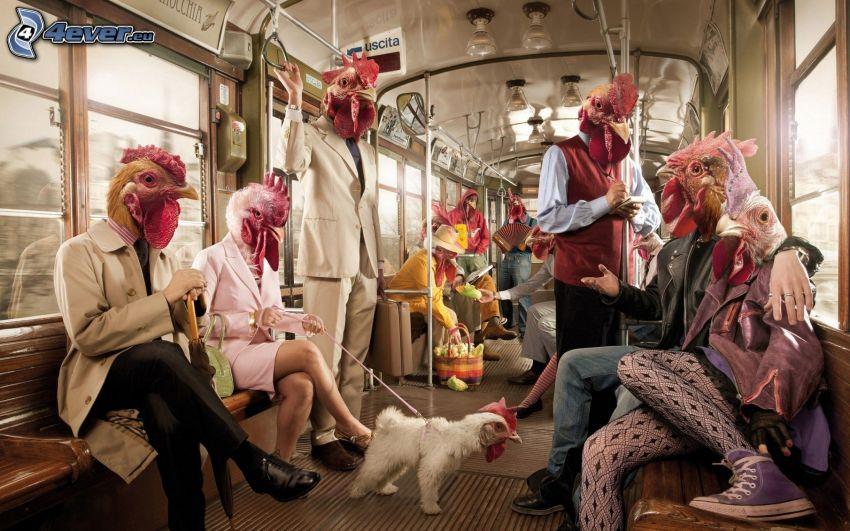 Coq et poules, wagon, métro