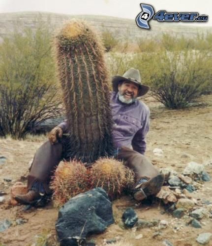 cactus, homme, désert, pénis