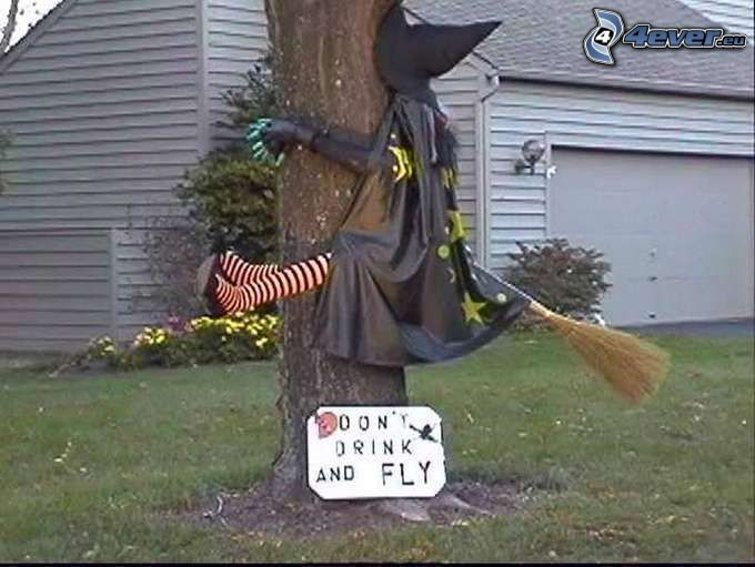 sorcière, alcool, arbre, un balai