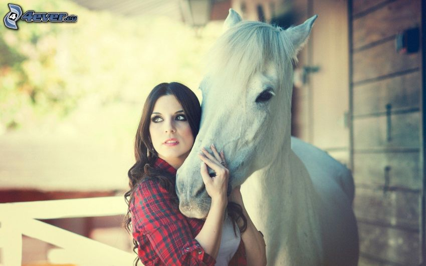 brune, cheval blanc