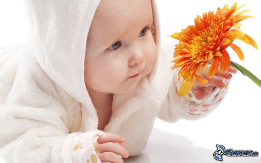 bébé, fleur