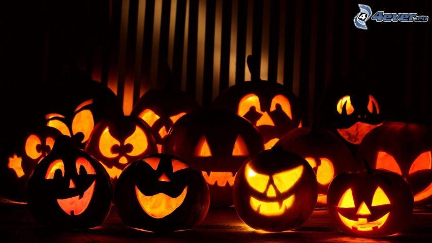 Citrouilles d'Halloween, obscurité