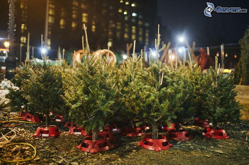arbre de Noël, ville dans la nuit