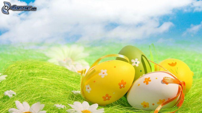 des oeufs peints, oeufs de Pâques, marguerites