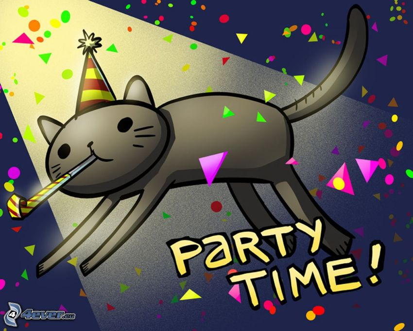 party, chat, célébration