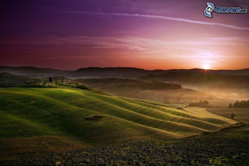 champ, coucher du soleil, traînée de condensation