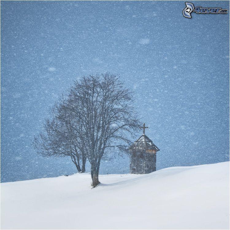 chapelle, arbre sans feuilles, chute de neige