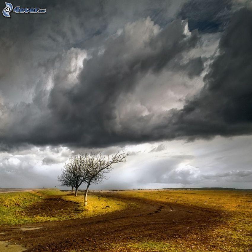 chemin de campagne, arbre sans feuilles, nuages d'orage