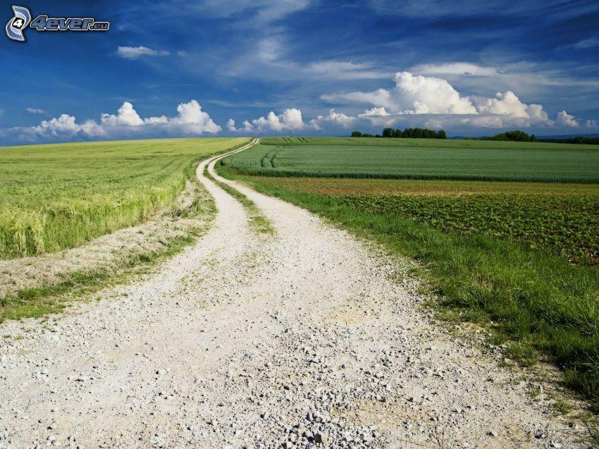 chemin de campagne, champ, nuages