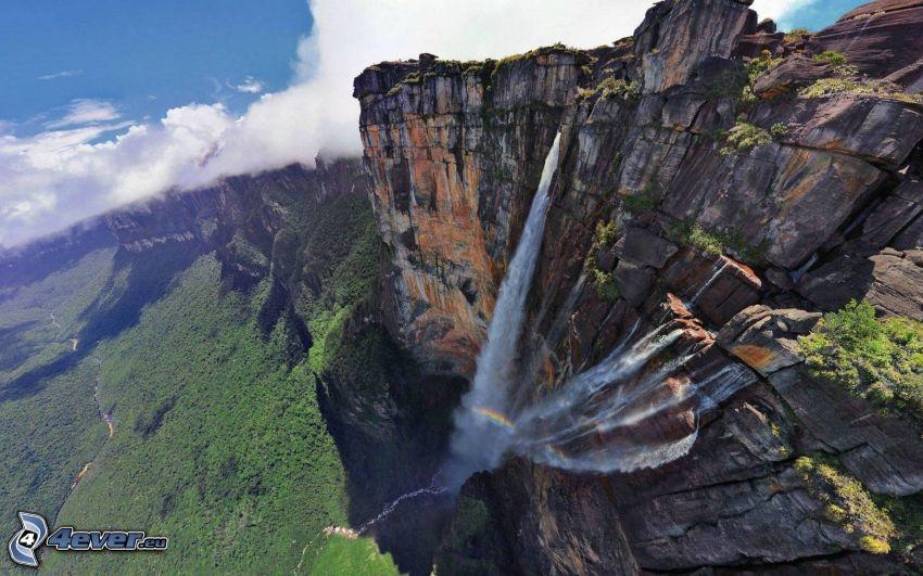 chute d'eau Angel, falaise, forêt, nuages, Venezuela
