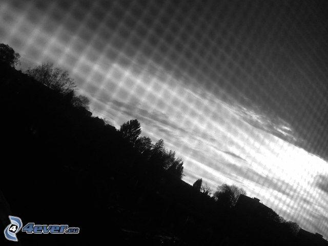 ciel sombre, silhouettes d'arbres, clôture