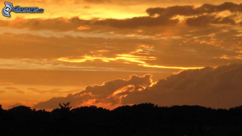 coucher du soleil orange, nuages, l'horizon