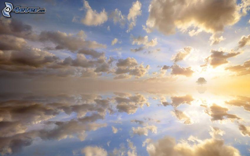nuages, coucher du soleil, arbre solitaire, reflexion