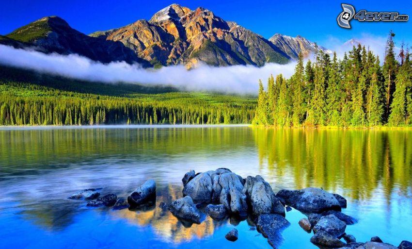 lac dans la forêt, montagnes rocheuses, arbres conifères, pierres