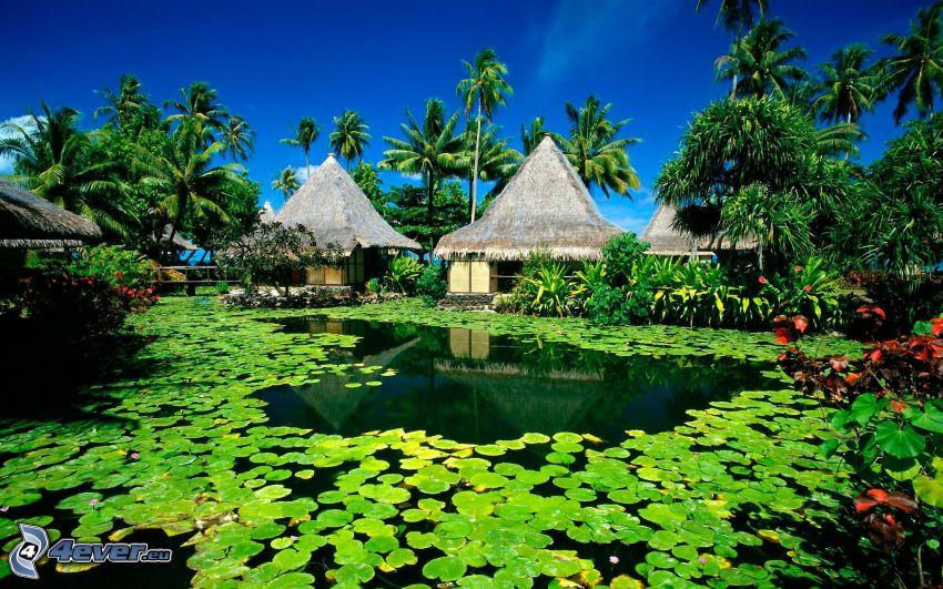 maisons sur l'eau, palmiers, nénuphars, lac