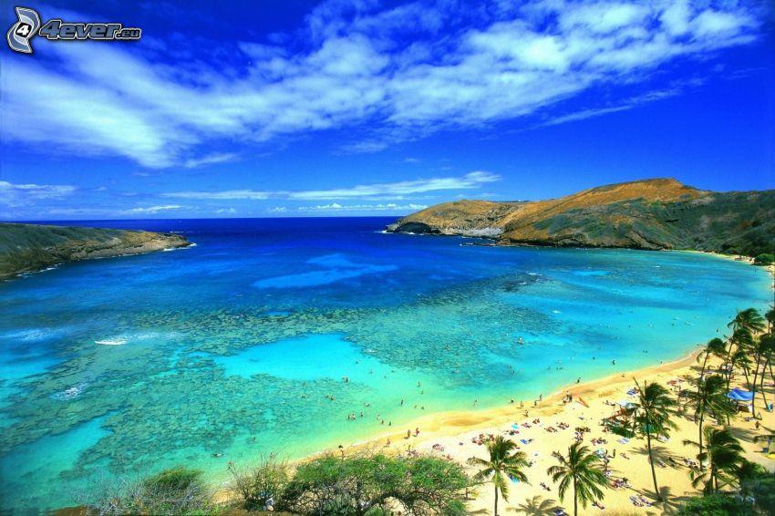 ouvert mer, plage, côte