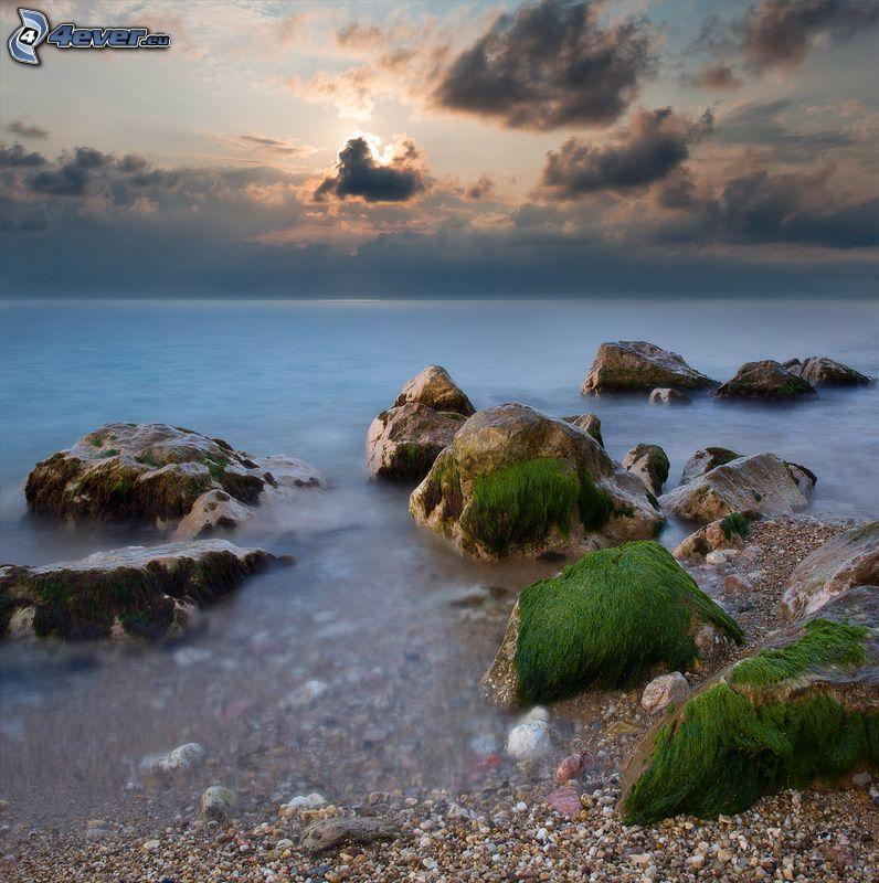 roches dans la mer, les algues, soirée