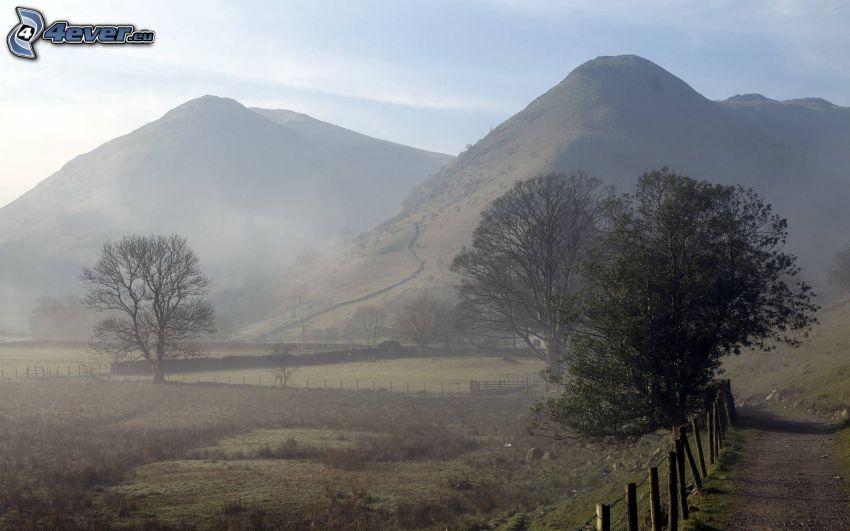 collines, brouillard, clôture