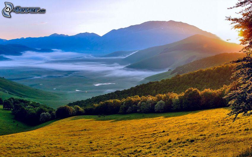 collines, brouillard au sol