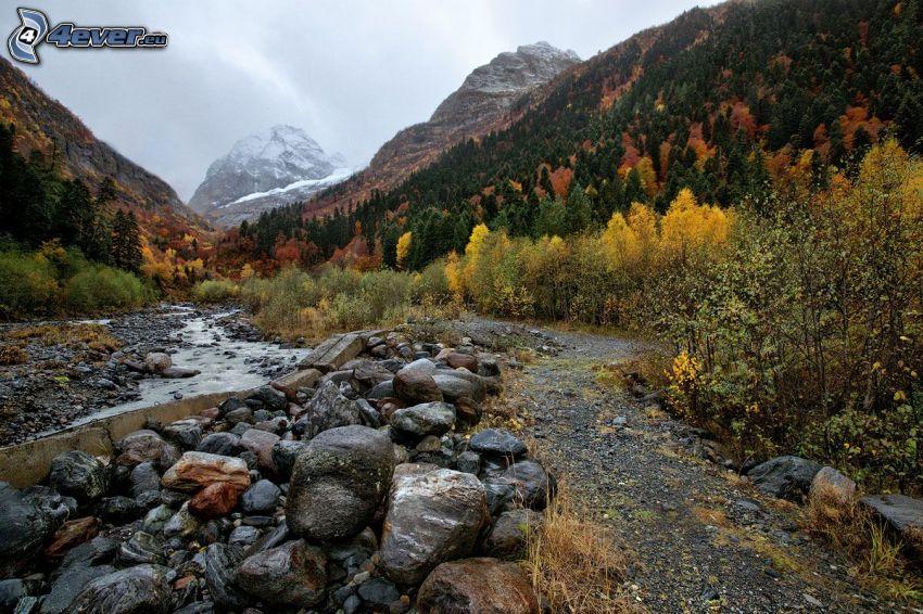 collines rocheuses, arbres colorés, ruisseau, pierres, sentier