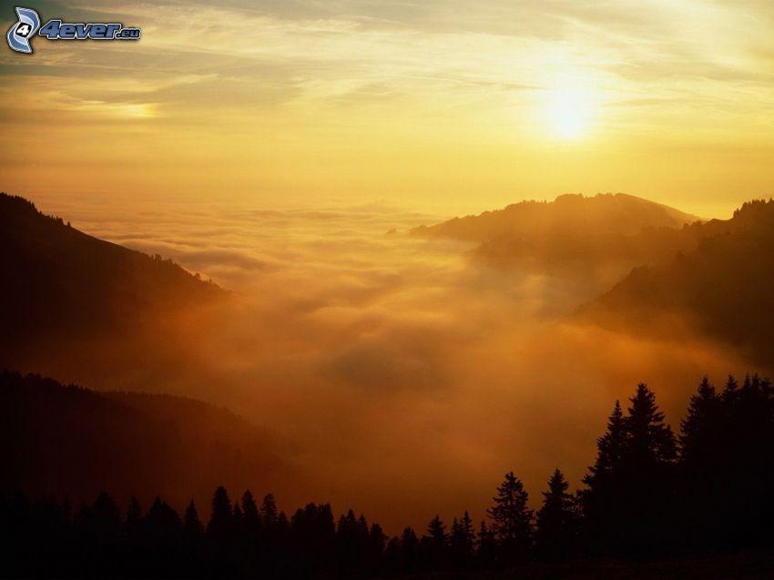 Coucher du soleil sur les nuages, collines, forêt de conifères