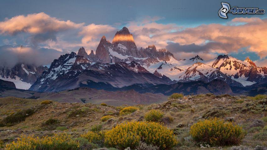 Mount Fitz Roy, montagnes rocheuses, neige, arbustes