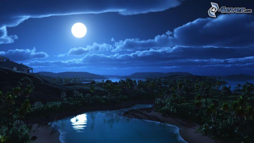 nuit, lune, palmiers, eau