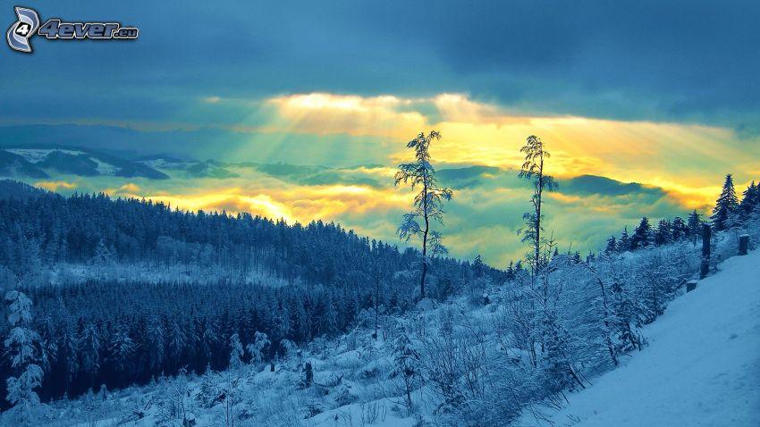 paysage enneigé, rayons du soleil, couche d'inversion