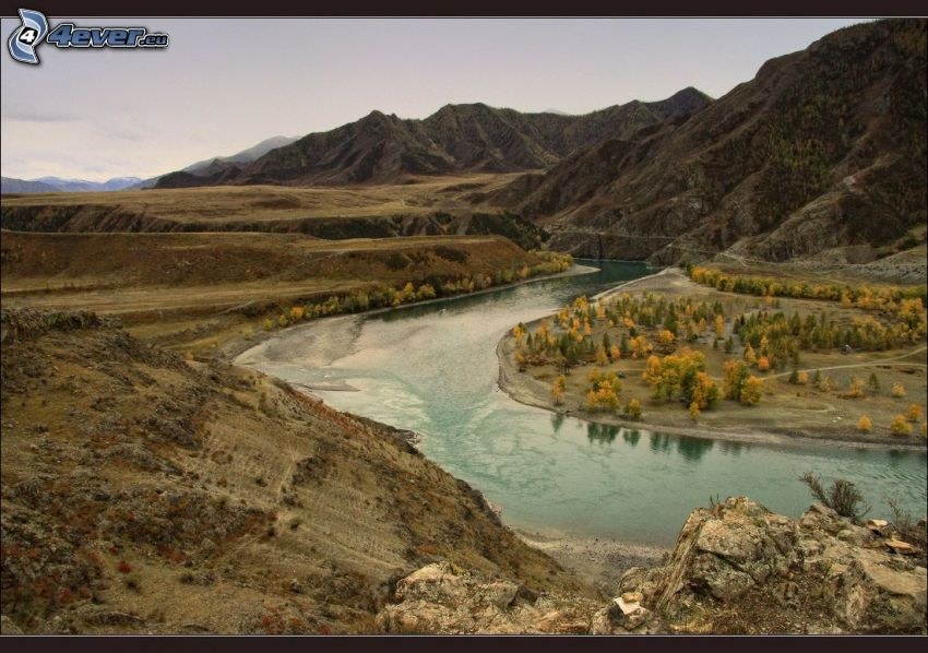 rivière, collines, arbres d'automne