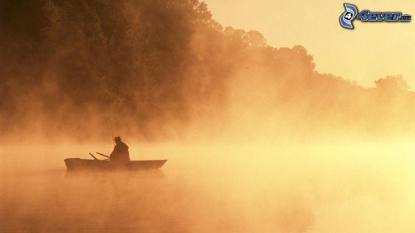 pêcheur, bateau, brouillard au sol, lac, arbres