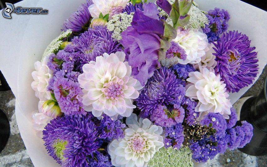 bouquet, fleurs bleues, fleurs blanches
