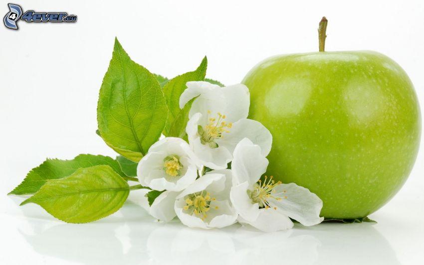 pomme, fleur