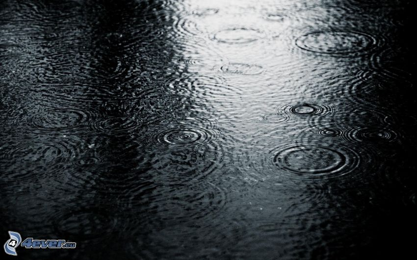 pluie, des ronds dans l´eau