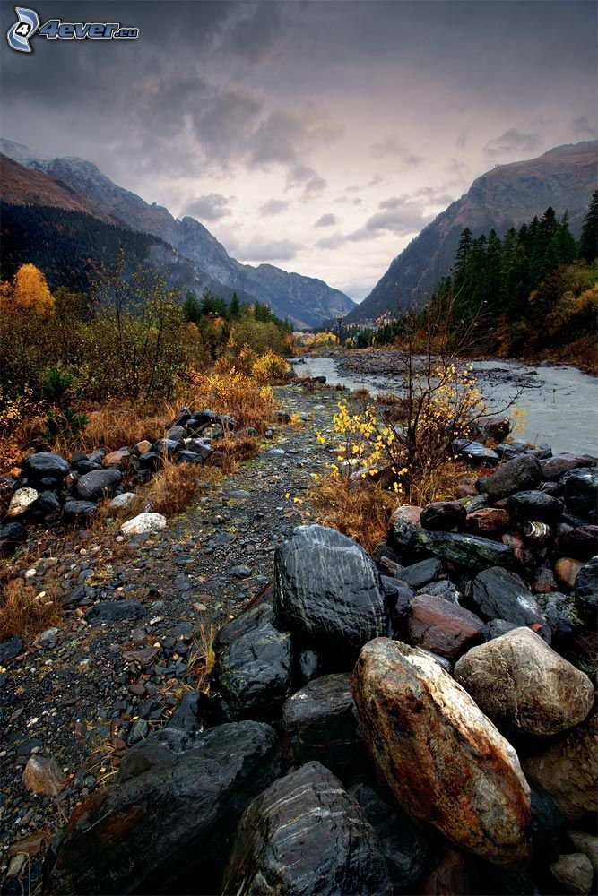 ruisseau de montagne, pierres, collines, arbres d'automne