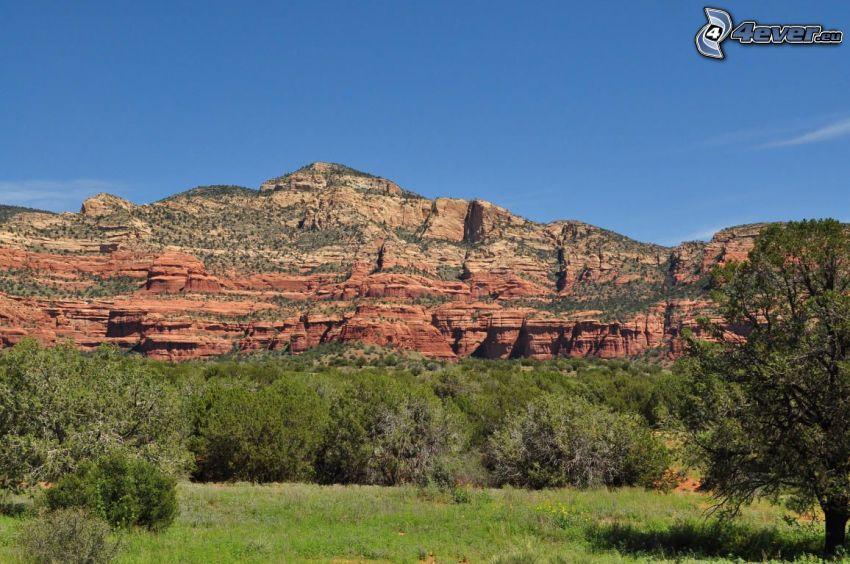 Sedona - Arizona, rochers, forêt