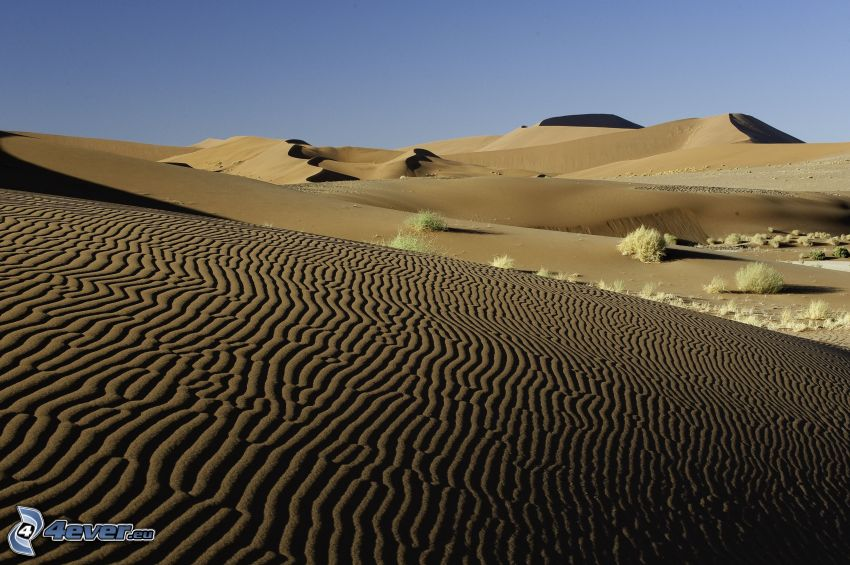 Sossusvlei, dunes de sable