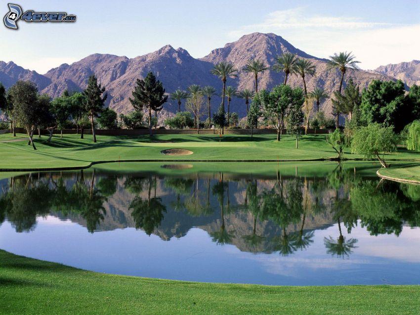 terrain de golf, lac, palmiers, montagnes rocheuses