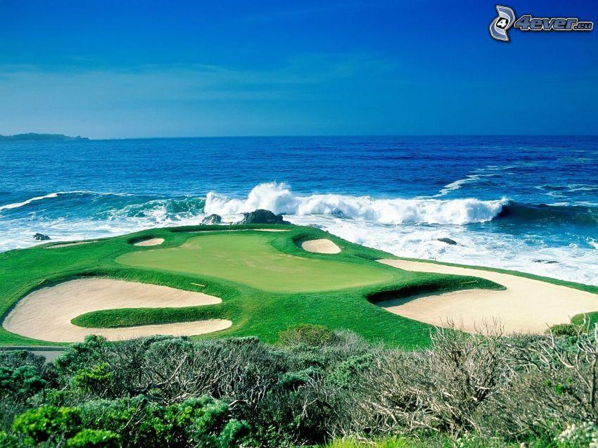 terrain de golf, mer