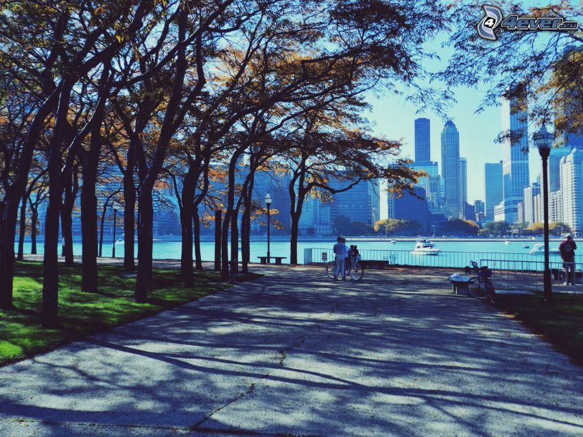 trottoir, arbres d'automne, gratte-ciel, USA