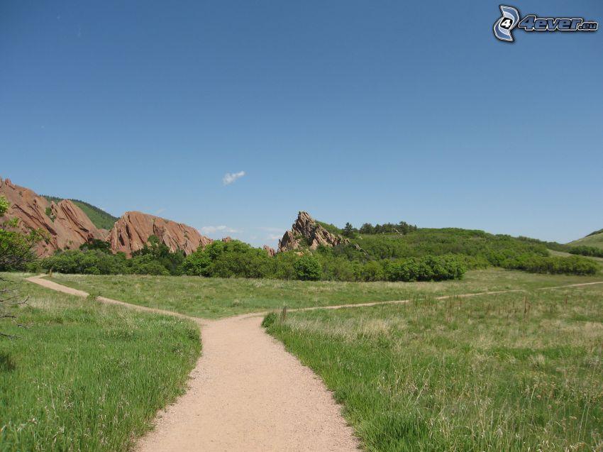 trottoir, carrefour, collines, prairies