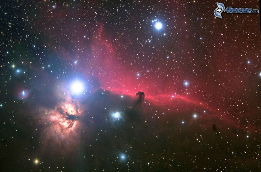 Nébuleuse de la Tête de Cheval, nébuleuses, étoiles