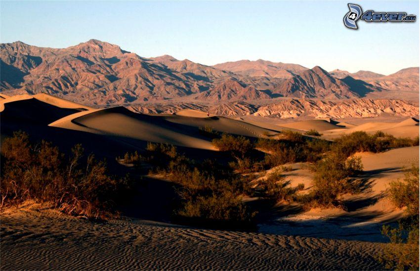 Vallée de la Mort, montagne, dunes de sable