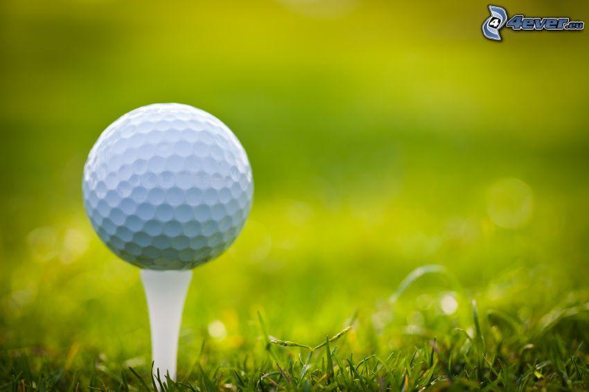 balle de golf, brins d'herbe
