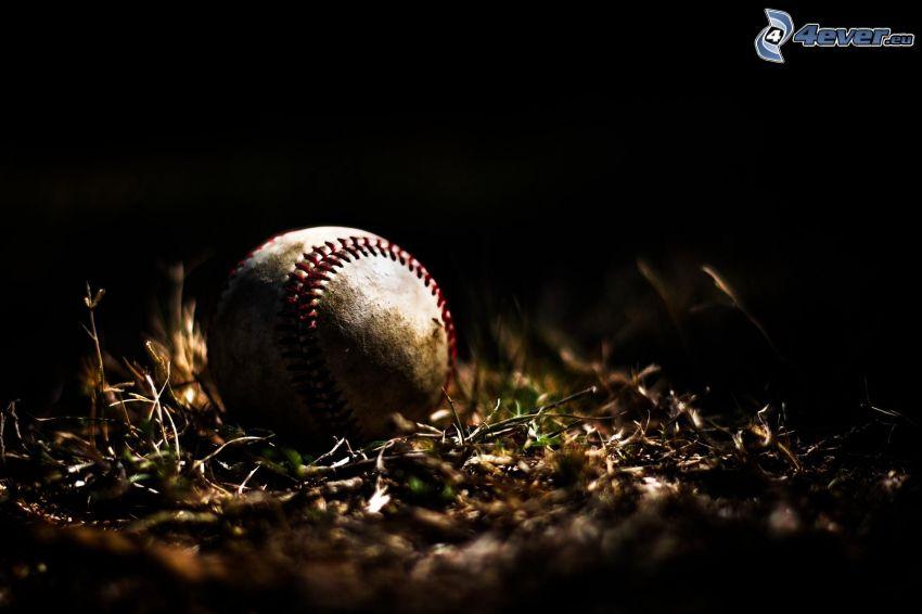 baseball, l'herbe