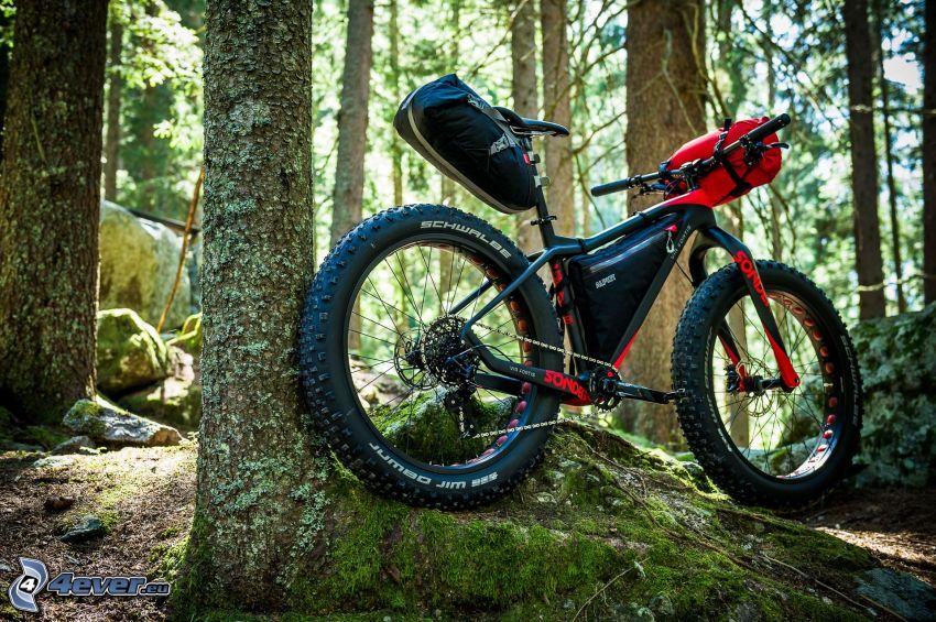 vélo tout terrain, forêt, rocher