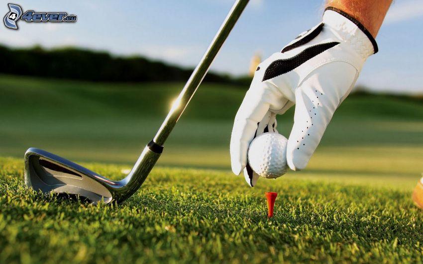 golf, balle de golf, club de golf, gants, pelouse