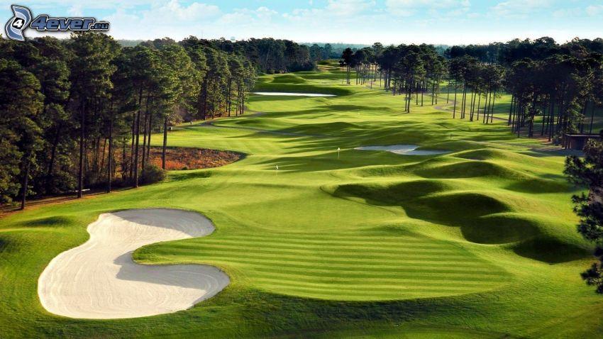 terrain de golf, forêt