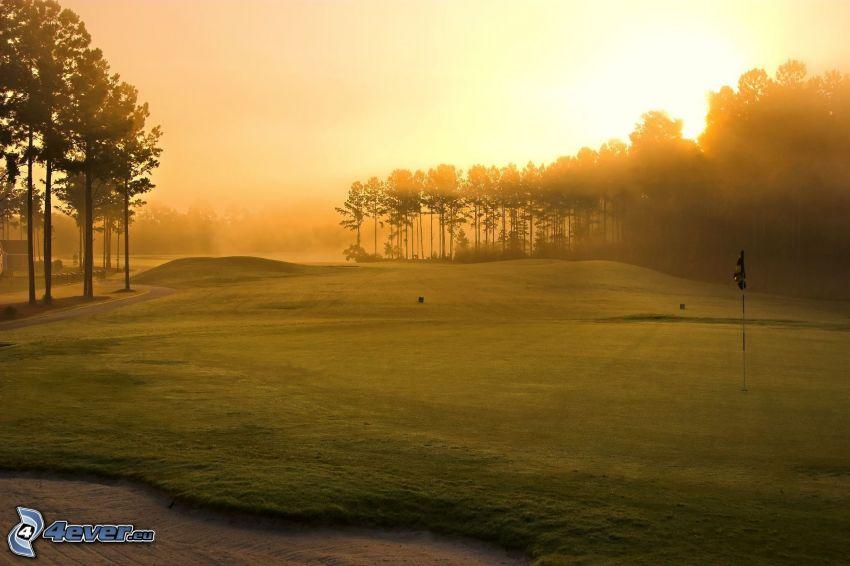 terrain de golf, rayons du soleil